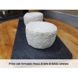 FORMAGGIO PRIMO SALE GR. 100